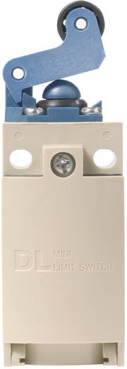 Endschalter 220 V/DC, 380 V/AC 6 A Rollenhebel tastend Panasonic AZD1050CEJ IP67 1 St.