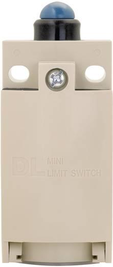 Endschalter 220 V/DC, 380 V/AC 6 A Stößel tastend Panasonic AZD1051CEJ IP67 1 St.