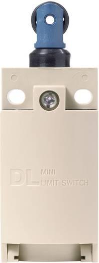 Endschalter 220 V/DC, 380 V/AC 6 A Rollenstößel tastend Panasonic AZD1052CEJ IP67 1 St.