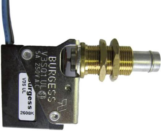 Burgess Mikroschalter V3SQ1UL 250 V/AC 5 A 1 x Ein/(Ein) IP67 tastend 1 St.