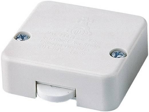 Türklappenschalter 250 V/AC 2 A interBär 5120-003.05 tastend 1 St.