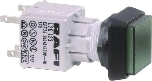 Drucktaster Betätiger erhaben Transparent RAFI 130070051/1002 1 St.