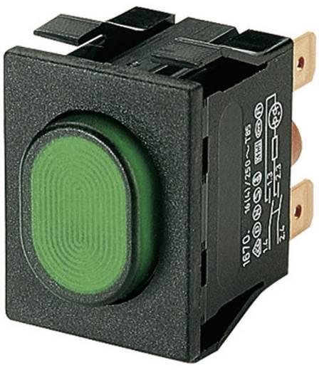 Druckschalter 250 V/AC 16 A 2 x Ein/Aus Marquardt 1670.5202 IP54 rastend 1 St.