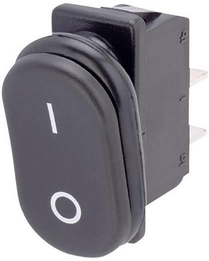 Wippschalter 250 V/AC 16 A 1 x Ein/Aus/Ein Marquardt 1838.3901 IP67 rastend/0/rastend 1 St.