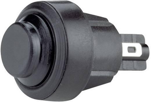 Marquardt 5000.0501 Drucktaster 250 V/AC 4 A 1 x Aus/(Ein) IP54 tastend 1 St.