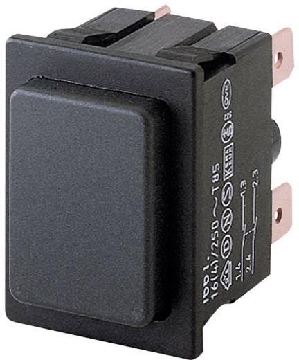 Druckschalter 250 V/AC 16 A 2 x Aus/Ein Marquardt 1661.0201 IP40 rastend 1 St.