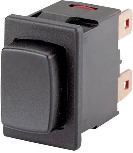 Druckschalter 250 V/AC 16 A 1 x Ein/Aus Marquardt 1683.1101 IP40 rastend 1 St.