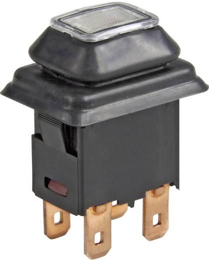 Marquardt 1683.8101 Druckschalter 250 V/AC 16 A 1 x Ein/Aus IP65 rastend 1 St.