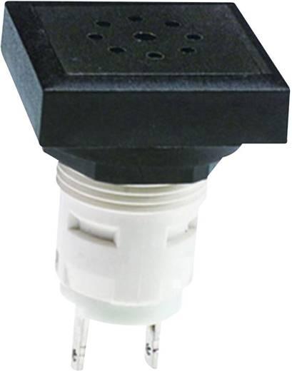 Akustische Signalgeber