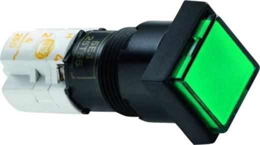Druckschalter 250 V 4 A 1 x Aus/Ein RAFI 1.15.108.356/0000 IP40 rastend 5 St.