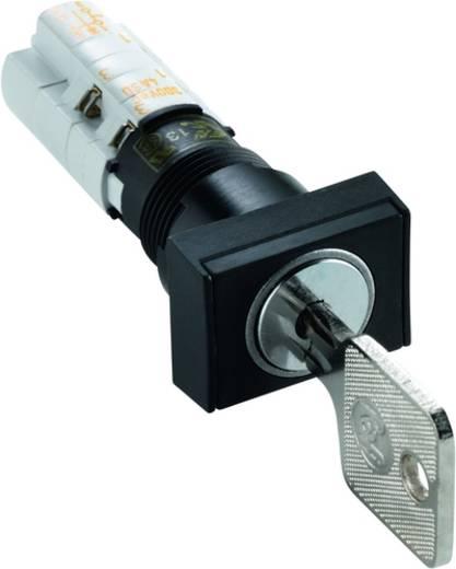 Schlüsselschalter 250 V/AC 4 A 1 x Aus/(Ein) 1 x 45 ° RAFI 1.15.108.661/0100 IP40 2 St.