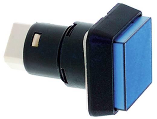 Drucktaster 35 V 0.1 A 1 x Aus/Ein RAFI 1.15.150.656/0000 IP65 tastend 5 St.