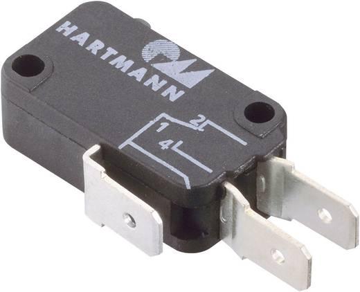 Hartmann Mikroschalter 04G01B01X01A 250 V/AC 16 A 1 x Ein/(Aus) tastend 1 St.