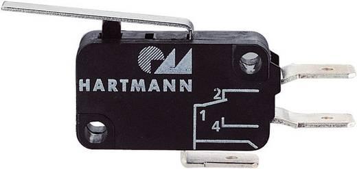 Hartmann Mikroschalter 04G01C04B01A 250 V/AC 16 A 1 x Ein/(Ein) tastend 1 St.