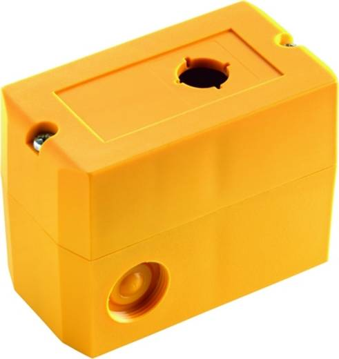Leergehäuse 1 Einbaustelle (L x B x H) 100 x 55 x 74 mm Gelb RAFI 1.20.810.202/0000 1 St.