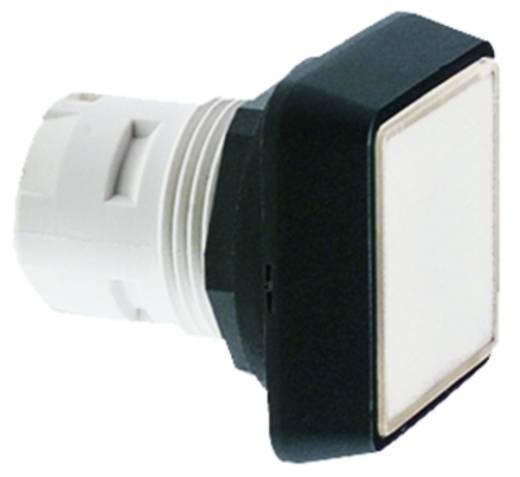 Drucktaster Betätiger flach Grün RAFI RAFIX 16 1.30.070.251/0500 50 St.