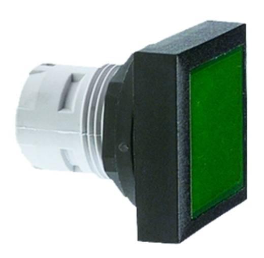 Leuchtvorsatz flach Farblos, Transparent RAFI 1.65.124.651/0000 5 St.