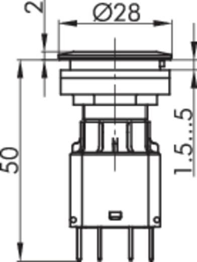 Kontaktelement mit Lampenfassung 1 Öffner, 1 Schließer rastend 250 V Schlegel BFL5 1 St.