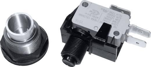 Vandalismusgeschützter Drucktaster 250 V/AC 15 A 1 x Ein/(Ein) Arcolectric C0911VAAAA tastend 1 St.