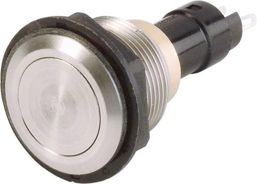 Vandalismusgeschützter Drucktaster 250 V/AC 0.5 A 1 x Aus/(Ein) Arcolectric T0916VAAAA tastend 1 St.