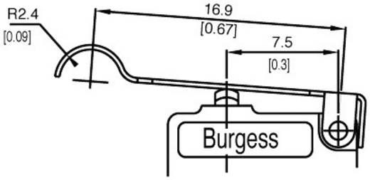 Mikroschalter 250 V/AC 5 A 1 x Ein/(Ein) Burgess F4T7YCUL IP40 tastend 1 St.