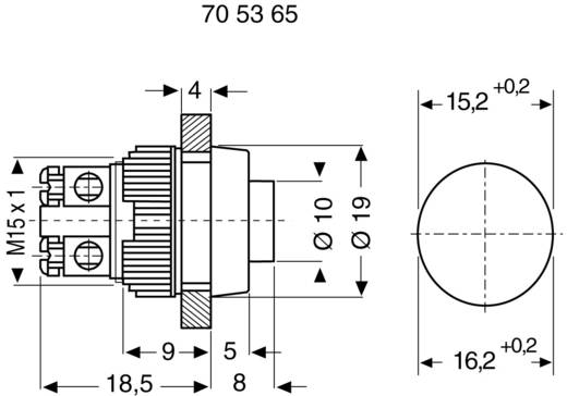 RAFI 110001001.0507 Drucktaster 250 V/AC 0.7 A 1 x Aus/(Ein) tastend 1 St.