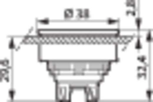 Drucktaster Frontring Metall, verchromt Grün BACO L23CH20 1 St.