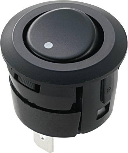 Wippschalter 250 V/AC 3 A 1 x Ein/Ein Miyama DS-059A-WD rastend 1 St.