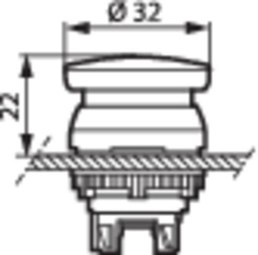 Pilztaster Frontring Kunststoff, verchromt Grün BACO L21AC02 1 St.