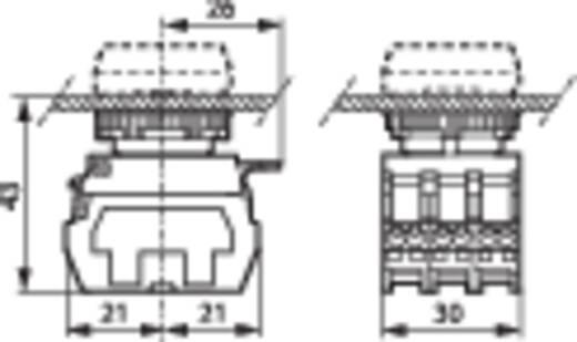 Meldeleuchte mit Lampentestmodul, mit Adapter Weiß 230 V/AC BACO 333ETTHW 1 St.