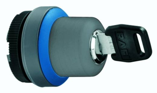 Schlüsselschalter Grau 1 x 40 ° RAFI RAFIX 22 FS 1.30.255.001/0100 2 St.