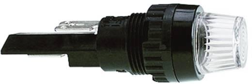 Industrie Verpackungseinheit Signalleuchten mit Lampenfassung 250 V 2 W Sockel=BA9s Grün (transparent) RAFI Inhalt: 250