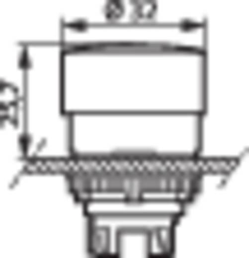 Pilztaster Frontring Kunststoff, Schwarz Rot Drehentriegelung BACO L22EC01 1 St.