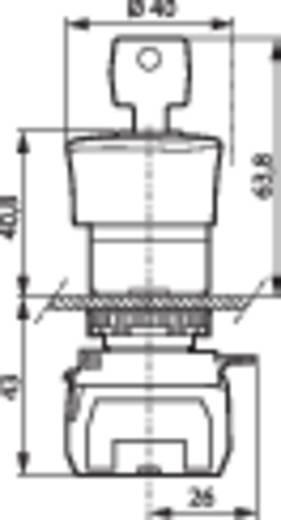 Not-Aus-Schalter Frontring Kunststoff, Schwarz, mit Statusanzeige Rot Schlüsselentriegelung BACO L22GR01B 1 St.