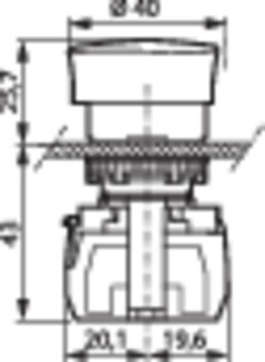 Not-Aus-Schalter Frontring Kunststoff, Schwarz Rot Drehentriegelung BACO L22ED01D 1 St.