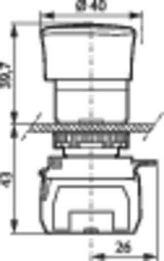 Not-Aus-Schalter Frontring Kunststoff, Schwarz Rot Drehentriegelung BACO L22ER01D 1 St.