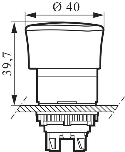 Not-Aus-Schalter Frontring Kunststoff, Schwarz, mit Statusanzeige Rot Zugentriegelung BACO L22DN10 1 St.
