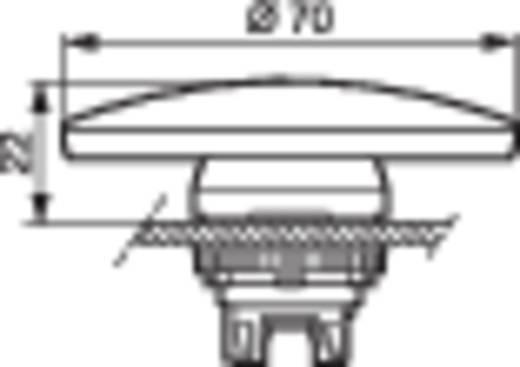 Pilztaster Frontring Kunststoff, verchromt Rot BACO L21AE01 1 St.