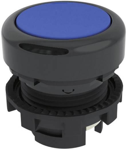 Drucktaster Blau Pizzato Elettrica E21PU2R6210 1 St.