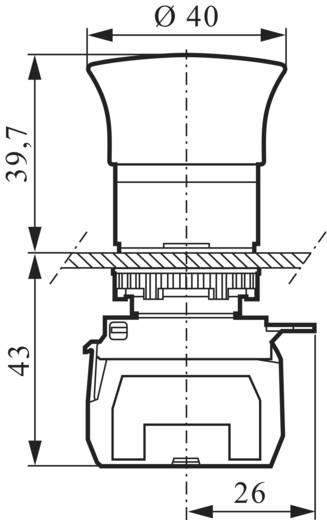 Not-Aus-Schalter Frontring Kunststoff, Schwarz, mit Statusanzeige Rot Zugentriegelung BACO L22DR01B 1 St.