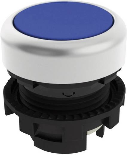 Drucktaster Blau Pizzato Elettrica E21PU2R6290 1 St.