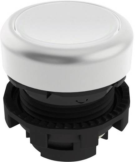 Drucktaster Schwarz Pizzato Elettrica E21PL2R2290 1 St.