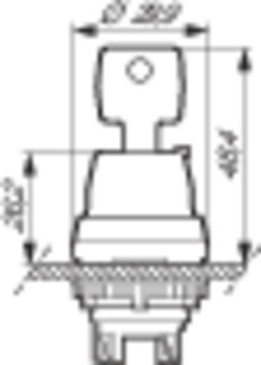 Schlüsselschalter Frontring Kunststoff, verchromt Schwarz, Chrom 1 x 45 ° BACO L21NA00 1 St.