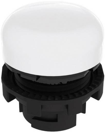 Leuchtvorsatz Weiß Pizzato Elettrica E21ILA210 1 St.