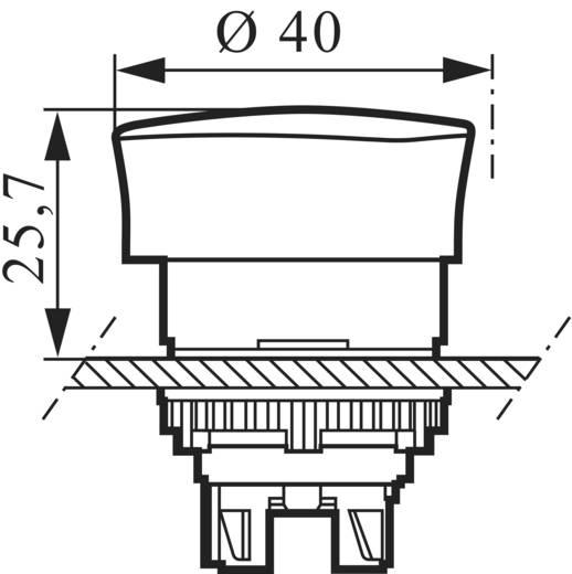 Pilztaster Frontring Kunststoff, Schwarz Rot Drehentriegelung BACO L22EM10 1 St.
