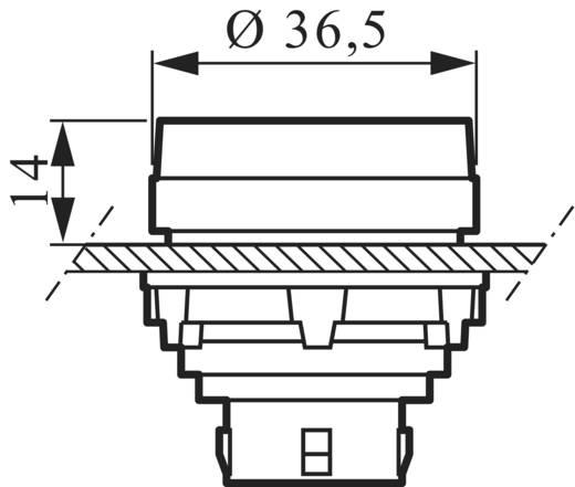 Kontaktelement, LED-Element mit Befestigungsadapter 1 Schließer Grün tastend 230 V BACO 333ERAGH10 1 St.