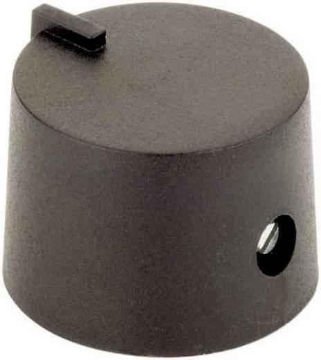 21/6 SW Drehknopf mit Zeiger Schwarz (Ø x H) 21 mm x 14 mm 1 St.