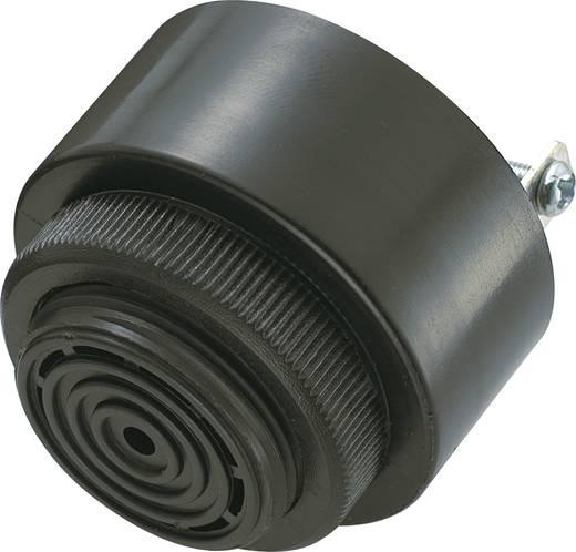 Miniatur Summer 80 dB 230 V KEPO KPI-G4321-230VAC-6304 43 mm x 33 mm Inhalt: 1 St.
