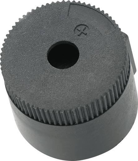 Piezo-Signalgeber Geräusch-Entwicklung: 90 dB Spannung: 12 V Dauerton KEPO KPI-G3020-6277 1 St.