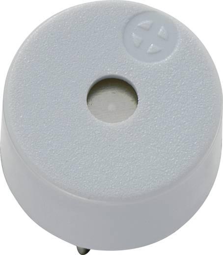 Piezo-Signalgeber Geräusch-Entwicklung: 85 dB Spannung: 12 V Dauerton KEPO KPX-G1212B1-6341 1 St.